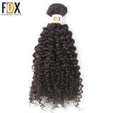 Raw Virgin Indian Cuticle Aligned Wholesale Kinky Curly Human Hair