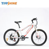 LG Lithium Battery Mountain Electric Bike with 21/27 Shimano Derailleur