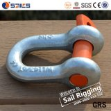 Lifting Fastener Anchor Screw Pin D Shackle G-210