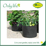 Onlylife Cute and Delicate Fabric Grow Planter