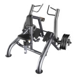 Ce Approved Lifefitness Gym Equipment / Row (SF2006)
