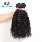 Wholesale Price Kinky Curly Virgin Brazilian Human Hair