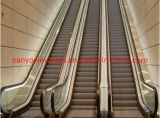 Factory price electric escalators and moving walks CE standard