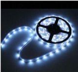 Cheaper Price DC12V SMD5050 LED Ribbon Strip Lighting (Single Color)