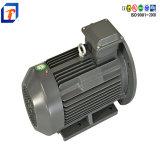 Custom Made 250kw Electric Motor Waterproof Electric AC Induction Motor