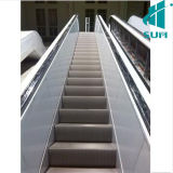 Indoor Escalator with Good Quality Competitive Price Indoor Outdoor Commercial Heavy Duty Vvvf Escalator Sum-Elevator