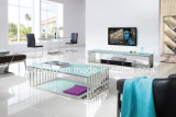 Stainless Steel Modern Italian Living Room Sofa Table / Circle Leg Glass Sofa Table