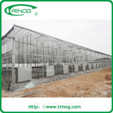 Multi Span Glass Greenhouse with gutter connecting