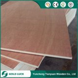 3mm Bintangor Faced Commercial Plywood for Packing Grade