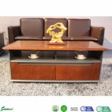 Modern Sofa MDF Wood Veneer Center Coffee Table in Office Furniture (J1869)