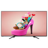 50inch Full HD Ultra-Slim Widescreen E-LED TV with AV/USB/DVD Black