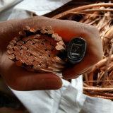 Copper Scrap/Electric Wire Cable Copper Wire at Competitive Price
