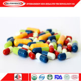 Lower Price Fat Burner L-Carnitine Capsules Health Food with High Quality