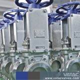 Mss Sp-81 Ss316 Wafer&Fully Lugged Knife Gate Valve