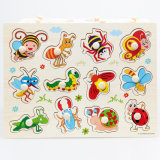 Classic Educational Wooden Peg Puzzle for Kids