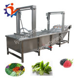 Commercial Cherries Raspberry Washing Cleaning Machine