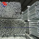 Hot-Dipped Galvanized Steel Y Star Fence Post for Farm Field Fencing