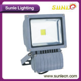 Wholesale 30W Road Lamp Outdoor LED Flood Lamp (SLEFLE 30N)