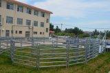 Cheap Australia New Zealand Popular Galvanized Farm Used Cattle Panel Portable Handling Equipment