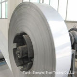 Professional Manufacturer Stainless Steel Strips AISI304L Grade