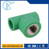 PPR Water Pipe Fittings Female Threaded Tee