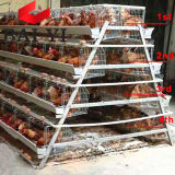 High Quality Used Poultry Battery Cages Chicken Cage for Laying Hen