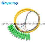 Sc/APC 12 Core Single Mode Fiber Optic Pigtail