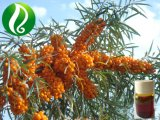 High Omega 7 Organic Seabuckthorn Berry Oil
