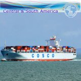 International Ocean Shipping Agent, Warehouse Service & Freight Forwarder (FCL 20''40'')