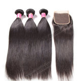 100%Human Hair Brazilian Fast Shipping Natural Straight Wave Wig