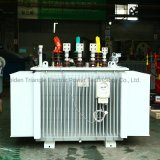 Oil Immersed Transformer (100-1600) kVA for Russian Market, with Accessories