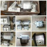 Atos Pdg Gear Hydraulic High Pressure Pump