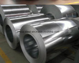 Professional Prime Hot Dipped Galvanized Iron and Steel/Galvanized Iron/Sheet Metal Coil