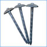 Galvanized Screw Shank Umbrella Head Cap Roofing Nail