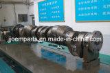 Diesel Engine Forged/Forging Crankshafts/Crank Shafts