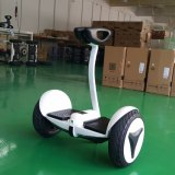 10 Inch Two Wheel Balance Scooter with bluetooth