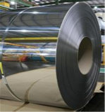 Stainless Steel Coil (304) with High Quality