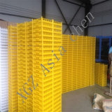 Plastic Egg Packing Tray, 30 Holes Plastic Transport Crate