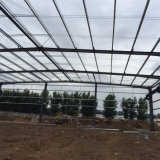 High Quality Building Purlin Materials for Steel Structure Warehouse