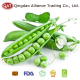 Frozen Sugar Snap Peas with High Quality