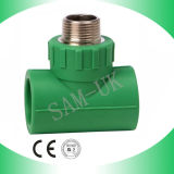 PPR Pipe Fitting Male Thread Tee with Green, White