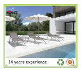 Adjustable Stainless Steel Outdoor Chaise Lounges with Teak Armrest