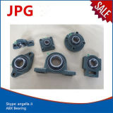 China Factory Pillow Block Bearing Ucf305-16 Ucf306-18 Bearing