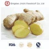 Farmer Price Prime Ginger for Supermarket