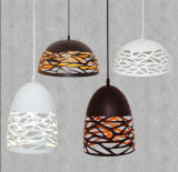 Jianer New Modern Hollowed-out Pendant Lighting in Black/White Painting