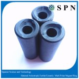 Ceramic /Ferrite Permanent Magnet for Water Pump