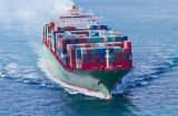 China Freight Forwarder Container Sea Freight From China to Brazil