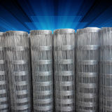 Galvanized Iron Knotted Netting by Roll Use for Farm 10 Years