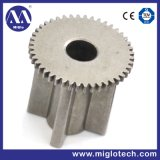 Customized Powder Metallurgy Gear (GE-100005)