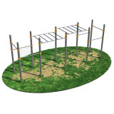 Outdoor Gym Equipment in Park Strength Training Equipment